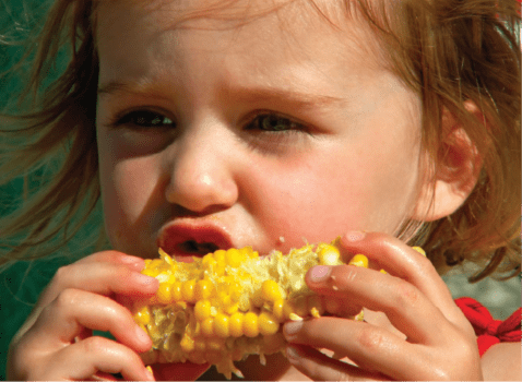 Cornfest Sept 10th