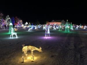 15 Edmonton + Area Holiday Light Displays That You Must See 2018