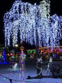 Leduc Country Christmas Lights