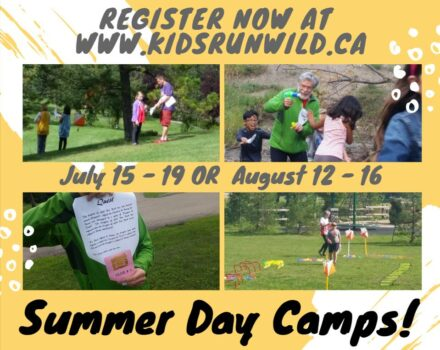Summer Camps Around Edmonton
